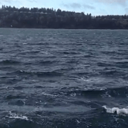 Wild water - The Tacoma Narrows in a storm with small white caps