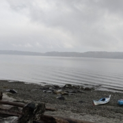 A pair of sea kayaks on the beach on a foggy misty morning in the north Puget Sound