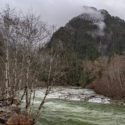 Picture of the Snoqualmie River taken from Middle Fork Road,
